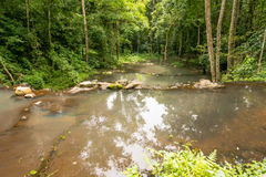 Ton Sai Waterfall Fotos de archivo