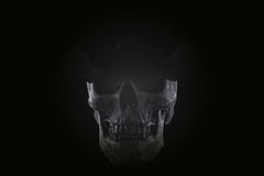 Ton toujours d'obscurité de crâne de la vie Images stock