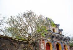 Ton Vietnam Royaltyfria Bilder