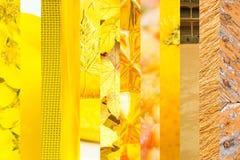 12 tonalità dell'arancia Fotografie Stock