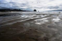 Tonalità della sabbia Fotografia Stock Libera da Diritti