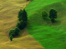 Tonalità di verde Fotografie Stock Libere da Diritti
