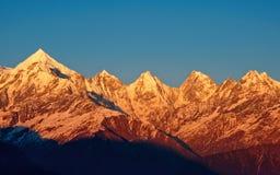 Tonalità dorata del picco di montagna placcato della neve Fotografie Stock Libere da Diritti