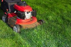 Tondeuse à gazon coupant l'herbe verte Photographie stock libre de droits