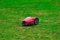 Tondeuse à gazon de robot sur le pré d'été dans le jardin avec l'espace de copie Images stock