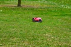 Tondeuse à gazon de robot sur le pré d'été dans le jardin avec l'espace de copie Photo stock