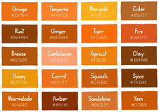 Tone Color Shade Background orange avec le code et le nom Photographie stock libre de droits