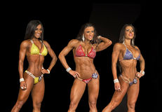 Toned Bikini Threesome. Three beauties compete in Bikini at the 2015 NPC Universe Championships in Teaneck, NJ, on July 3, 2015. Left to Right they are:  Angely Stock Image