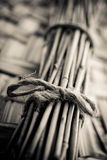 Toned bundle of bamboo stalks Royalty Free Stock Photos