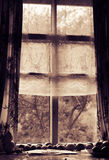 Toned foto of the old window. tomatoes lie near a window Stock Image