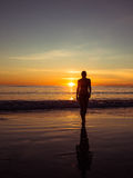 Toned image of a silhouette of an adult woman walking on the beach at sunset Stock Image