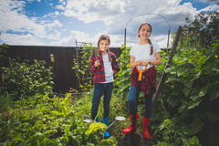 Toned image of two young sisters working at backyard garden Royalty Free Stock Photo