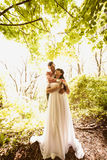 Toned photo of beautiful newly married couple hugging under tree Stock Photos