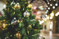 Toned photo of Christmas pine Royalty Free Stock Images