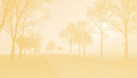 The toned photo of fog road Stock Photos