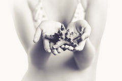 Toned photo of girl holding big starfish in hands Royalty Free Stock Photo