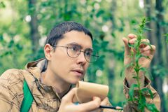 Toned picture of man with notebook. And pencil studying plant in forest in summer afternoon royalty free stock image