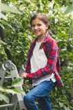 Toned portrait of beautiful smiling girl on stepladder at orchard. Portrait of beautiful smiling girl on stepladder at orchard Stock Photo