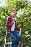 Toned portrait of beautiful teenage girl with apple sitting on stepladder. Portrait of beautiful teenage girl with apple sitting on stepladder Royalty Free Stock Photo