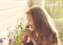 Toned portrait of girl holding flowers in the summer morning Stock Images