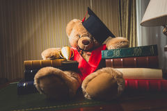 Toned shot of teddy bear in graduation cap sitting at library Stock Photos