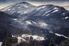 Toned shot of wind blowing on top of snowy mountains with forest Royalty Free Stock Images