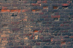 Toned texture of old wall of red bricks Royalty Free Stock Photos