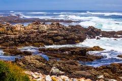 Toneel brandingsgolf op rotsachtige kustlijn Stock Afbeeldingen