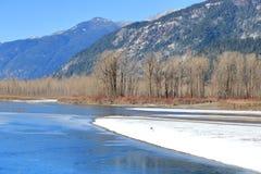 Toneel Canadees Fraser River in de Winter royalty-vrije stock afbeelding