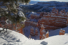 Toneel canion in de winter Stock Fotografie