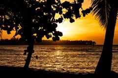 Toneel Cara?bische zonsondergang in Las Terrenas, Dominicaanse Republiek royalty-vrije stock afbeeldingen