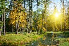 Toneel de herfstlandschap: park, meer en zonsondergang Stock Fotografie