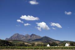 Toneel de wijnlandgoed Zuid-Afrika van Boland van de Kaap Stock Foto's