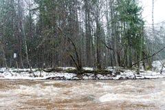 Toneel de winter gekleurde rivier in land Stock Afbeelding