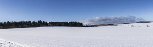 Toneel de winterpanorama met bomen Royalty-vrije Stock Afbeelding