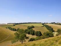 Toneel de zomerlandschap met lapwerkgebieden en weiden royalty-vrije stock afbeeldingen