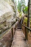 Toneel en mooie toerismesleep in het hout dichtbij rivier Stock Foto's