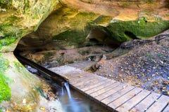 Toneel en mooie toerismesleep in het hout dichtbij rivier Royalty-vrije Stock Afbeeldingen
