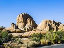 Toneel gouden rotsen in Joshua Tree National Park Royalty-vrije Stock Afbeelding