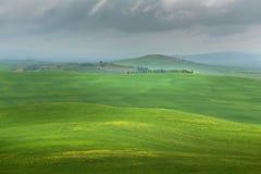 Toneel het landschapspanorama van Toscanië met rollende heuvels en oogstgebieden in gouden ochtendlicht stock foto