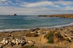 Toneel kustzeegezichtaard met verbindingen op strand Stock Afbeeldingen
