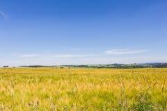Toneel Landschap Royalty-vrije Stock Fotografie