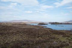 Toneel natuurlijke mening van Schotse hooglanden, het Verenigd Koninkrijk stock afbeelding