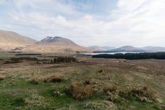 Toneel natuurlijke mening van Schotse hooglanden, het Verenigd Koninkrijk Stock Afbeeldingen