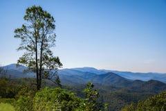 Toneel overzie van Blauw Ridge Mountains stock afbeeldingen