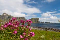 Toneel strand op eilanden Lofoten stock fotografie
