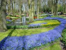 Toneel tuin met kleurrijke bloemen en vijver Royalty-vrije Stock Afbeeldingen