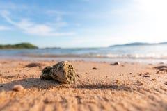 Toneel van het strand van het de zomerzand en bewolkte blauwe hemel Royalty-vrije Stock Foto's
