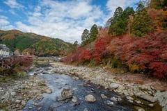 Toneel van landschap van de herfstseizoen Stock Foto