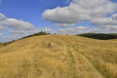 Toneel vroeg de herfstlandschap met landweg over heuvel Stock Foto's